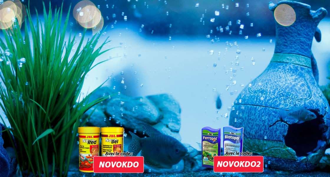 Animabassin animalerie en ligne discount produits et for Boutique aquariophilie