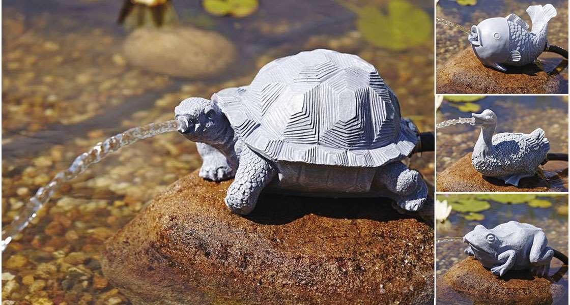 Animabassin animalerie en ligne discount produits et for Accessoire pour bassin